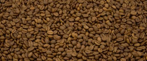 Indien Monssoned Malabar Kaffeebohnen