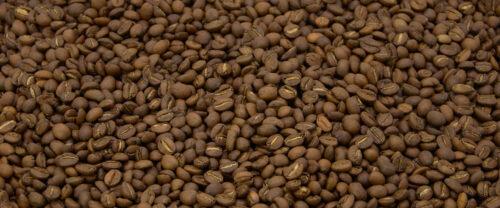 Indien Plantation Kaffeebohnen