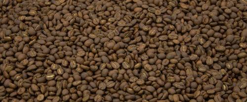 Kenia Meru Kaffeebohnen