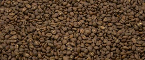 Peru Yakumama Kaffeebohnen
