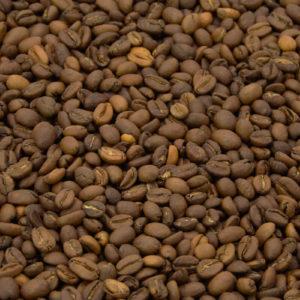 Wilder Regenwald Äthioien Kaffeebohnen