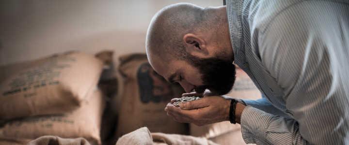 Kaffeerösterei Müller - Qualität des Rohkaffees kontrollieren