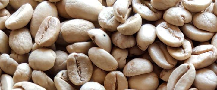 Kaffeerösterei - Rohkaffee Haltbarkeit